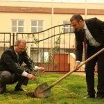 Zeytin Dalı Harekatı'na destek için fidan dikildi