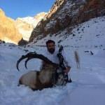 Dağ keçisini ok ile avladı