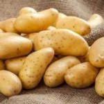 Bakan Fakıbaba: Patates fiyatları hemen düşecek
