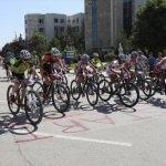 Uluslararası Dağ Bisikleti Kupası