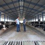 Üreticiler çiğ süt fiyatında artış bekliyor