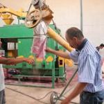 Zara Ziraat Odası buğday eleme hizmetine başladı