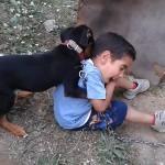 Kahramanmaraş'ta küçük çocukla köpeğin oyunu