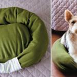 Evcil hayvanlar için yatak nasıl yapılır?