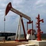 Petrolde bir önemli karar daha! Türkiye'deki sahalar...
