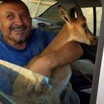 Kıbrıs gazisi su kanalına düşen dağ keçisi yavrusunu kurtardı
