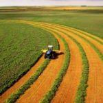 Gübre fiyatındaki indirim çiftçileri sevindirdi
