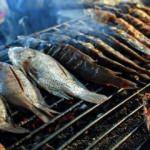 14. Tarihi Yarımada Fatih Balık Festivali başlıyor