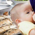 Emzirme döneminde balık yenir mi?