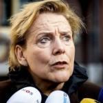 Hollanda kriz çıkartacak! Sınır dışı ettiler
