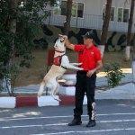 """Jandarmanın bombalara karşı """"Erken"""" güvencesi"""