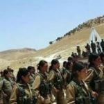 Sincar sorumlusu açıkladı: PKK kampları artıyor