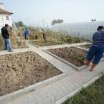 Osmanlı sarayından gönderilen tohumlar Safranbolu'da yeşeriyor