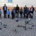 Okul bahçesinde güvercin besliyorlar