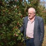 """Maden emeklisine 55 ton elma """"ikramiyesi"""""""