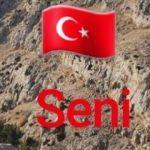 Ibrahimovic'ten Türk bayraklı ve Türkçe paylaşım