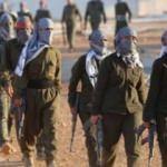 İlçe ayaklandı! PKK'ya karşı harekete geçtiler