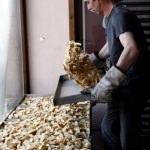 Tescilli ürün Beypazarı kurusuna sıkı koruma