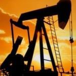 Brent petrolün varili 54,21 dolar