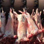 Yunanistan'dan getirilen 463 kilo kaçak et ele geçirildi