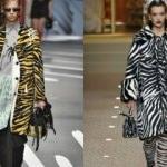 2019'un en yeni trendi: Zebra desen