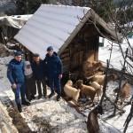 Yaşlı adam kaybolan keçilerine kavuştu
