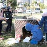 Minik öğrenciler harçlıklarıyla sokak hayvanlarına mama aldılar