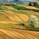 8,5 milyon hektar arazi toplulaştırılacak