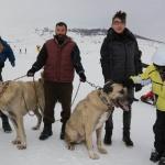 Kangal köpekleri Yıldız Dağı'nda ilgi odağı oldu