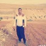 Şanlıurfa'da devrilen traktörün altında kalan kişi öldü