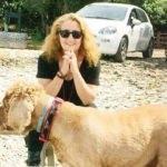 'Deli Yürek' dizisinin senaristi Güliz Kucur'a korkunç saldırı!