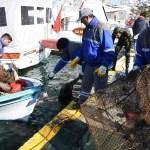 Muğla'da deniz dibi temizliği