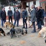Harçlıklarıyla aldıkları mamalarla sokak hayvanlarını beslediler
