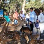 Hayvanat bahçesi kadınlar ve çocuklara ücretsiz olacak