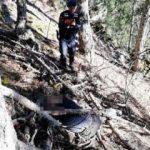 Ormanda acı ölüm! Bu halde bulundu
