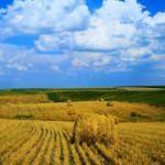 Bakanlıktan tarımla ilgili iddialara yanıt!