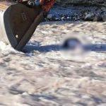 Asma köprüden düşen adam hayatını kaybetti