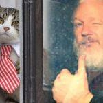 Assange tutuklandı, peki ya James? Herkes onu konuşuyor