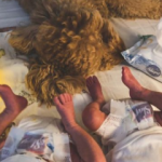 Pelin Akil Instagram'da ikizlerini paylaştı!