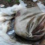 Çuvala koyulup ölüme terk edilen köpek kurtarılamadı