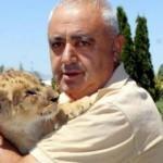 Yavru aslanı, bakıcılar besliyor