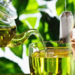 Hamileler yeşil çay içebilir mi? Yeşil çayın faydaları ve zayıflama yöntemi