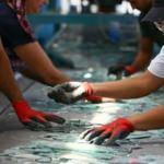 Atık camlar yeniden ekonomiye kazandırılıyor