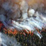 Orman yangınları Su-24MR ile incelenecek