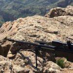 Jandarma ve MİT'ten ortak operasyon! Öldürüldü