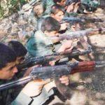 Sadece 2 ay sürdü! PKK, BM'yi bile kandırdı
