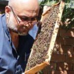 Bu arılar sokmuyor! Yurt içi ve yurt dışına satıyor