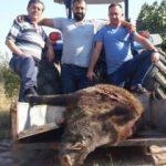 Öldürebilmek için 2 saat peşinden kovaladılar