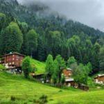 Karadeniz'in gözdesi: Ayder Yaylası