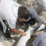 Dünyaca ünlü uzman o fosil için Kayseri'de!
